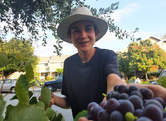 A fruit picking vacation with your family can be fun!